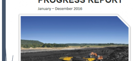 Annual Progress Report 2016